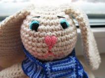 Зайцы Amigurumi стоковые фото