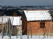 Зайчик виноградника сделанный кирпича с снегом Стоковые Изображения