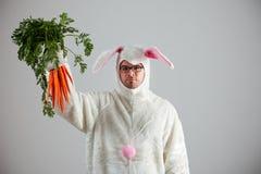 Зайчик: Кролик преуспевает в получать морковей Стоковые Фотографии RF