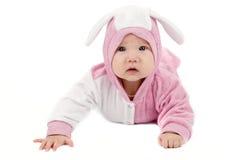 зайчик младенца Стоковое Изображение RF