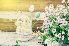 зайчик пасха корзины Стоковая Фотография RF