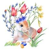 Зайчик пасхи в цветках с пасхальными яйцами белизна изолированная предпосылкой Стоковая Фотография RF