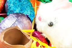 Зайчик пасхи ест яичко Стоковая Фотография