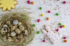 Зайчик пасхи зайчика пасхи и печенья в форме солнца Стоковые Фото