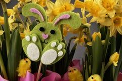 Зайчик пасхи и желтые daffodils Стоковая Фотография
