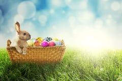 Зайчик пасхи и пасхальные яйца в корзине Стоковая Фотография RF