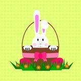 Зайчик пасхи/кролик внутри корзины бесплатная иллюстрация