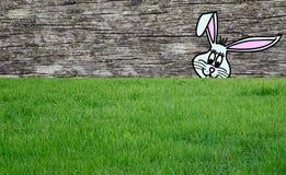 Зайчик пасхи на траве Стоковое Изображение RF