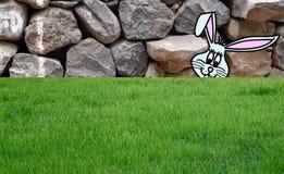 Зайчик пасхи на траве Стоковое Фото