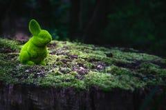 Зайчик пасхи сидит на стволе дерева стоковое изображение