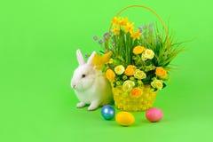 Пасха - сладостный белый зайчик на зеленом цвете Стоковые Фото