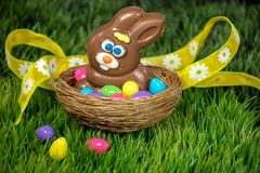 Зайчик пасхи шоколада в гнезде с яйцами стоковое изображение rf