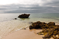 зайчик пляжа Стоковое Изображение