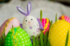 Зайчик с красочными яичками стоковое изображение rf