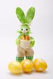 зайчик eggs зеленый цвет Стоковая Фотография RF