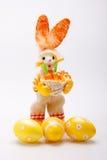 зайчик eggs помеец Стоковая Фотография RF