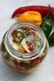 Заквашенные чеснок и chili в стеклянной бутылке стоковое изображение rf