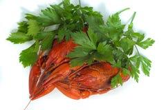 2 закипели crayfishs на предпосылке изолята белой с зеленым цветом Стоковое Фото