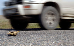 закодируйте движение хайвея опасности Стоковое Фото