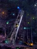 заколдованные древесины Стоковая Фотография RF