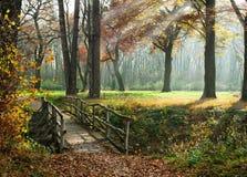 заколдованный осенью путь парка Стоковые Изображения RF