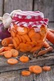 Законсервированная морковь стоковые изображения rf