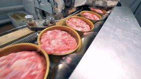Законсервированное движение на линии, конец мяса вверх сток-видео