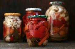 Законсервированные замаринованные овощи Стоковые Изображения
