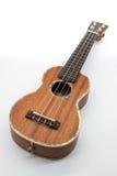 Законченная сатинировка гавайской гитары Стоковые Изображения