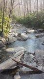 Закоптелое река горы стоковые фотографии rf