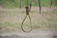 Закрепите петлей, закрепите петлей смертная казнь через повешение веревочки от дерева на предпосылке зеленой травы и деревьев Стоковые Изображения RF
