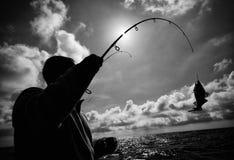закрепленный рыболов рыб Стоковое фото RF