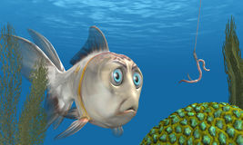 закреплять рыб Стоковое фото RF