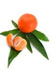 закрепляя сочный tangerine путя Стоковое Изображение