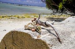 закрепляя изолированное море путя обстреливает белизну Стоковые Фото
