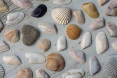 закрепляя изолированное море путя обстреливает белизну Стоковая Фотография