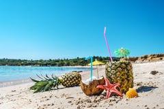 Закройте вверх ананасов и кокосов берегом Стоковые Изображения
