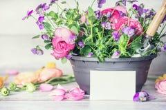 Закройте вверх бака цветков с поздравительной открыткой лопаткоулавливателя и белой бумаги на таблице, вид спереди, садовничать к Стоковые Фото