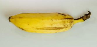 Закройте вверх банана на белой предпосылке Стоковые Фотографии RF