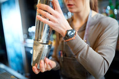 Закройте вверх бармена с шейкером коктеиля на баре Стоковая Фотография