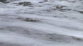 Закройте вверх берега моря на пляже сток-видео