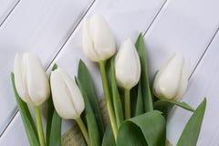 Закройте вверх белых тюльпанов на белой деревянной предпосылке Стоковые Фото