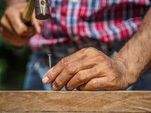Закройте вверх бить ноготь молотком в деревянную доску профессия, карп стоковое фото
