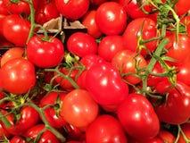 Закройте вверх большой коробки томатов на супермаркете Стоковое Фото