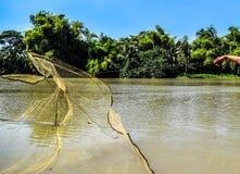 Закройте вверх бросать сеть к улавливая рыбам в реке стоковые фотографии rf