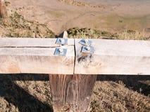 Закройте вверх 4 верхних частей винта металла на деревянной загородке Стоковая Фотография