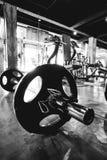 Закройте вверх весов тренировки гантели на поле Стоковые Изображения