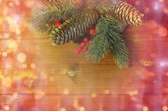 Закройте вверх ветви ели с конусами на деревянном столе Стоковые Фотографии RF