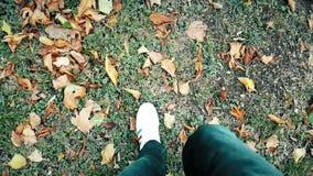 Закройте вверх взгляда сверху белого человека ботинок тапок идя на ковре красочных листьев осени и