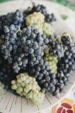 Закройте вверх виноградин на солнечный день стоковая фотография rf
